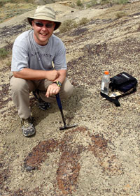 The Curious Case of The T-Rex Footprint Features