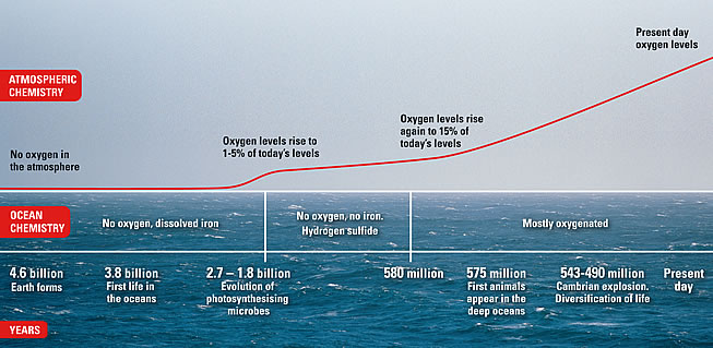 Oxygen Level Chart http://planetearth.nerc.ac.uk/features/story.aspx?id=72