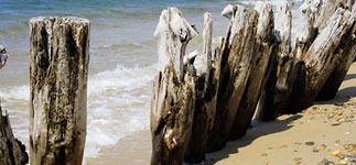 Old sea defences