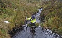 Sampling water quality in an upland stream.